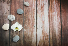 Natural Orchid Flowers On Gray Decorative Stones