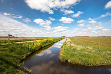 View Over A Dutch Landscape With A Canal, Grass, Blue Sky, White Clouds