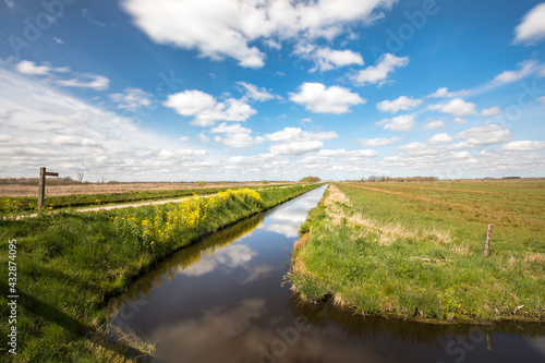 Fototapeta View over a Dutch landscape with a canal, grass, blue sky, white clouds