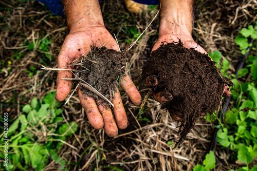 Stampa su Tela Fotografias autorais de agroecologias