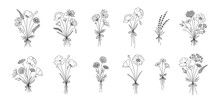 Wildflower Line Art Bouquets Set. Hand Drawn Flowers, Meadow Herbs, Wild Plants, Botanical Elements For Design Projects. Vector Illustration.