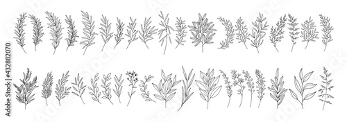 Canvas Print Leaves set, line art hand drawn branches