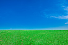 A Landscape Of Vast Green Fields And Blue Skies With White Clouds Floating With The Sun Shining Down.