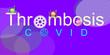 Leinwandbild Motiv Deep Vein Thrombosis. Covid 19 Vaccination. CORONA VACCINE. Banner, Image. Poster of Unusual Clotting. Coagulation Disorders. Cogwheels. Picture of virus. DVT. BLOOD CLOT.