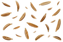 Falling Caraway Seeds Isolated On A White Background, Top View. Cumin Seeds In The Air On A White Background. Set Of Cumin Seeds In The Air. Caraway Grains Isolated On White Background.