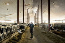 Portrait Of Farmer Working In Cowshed