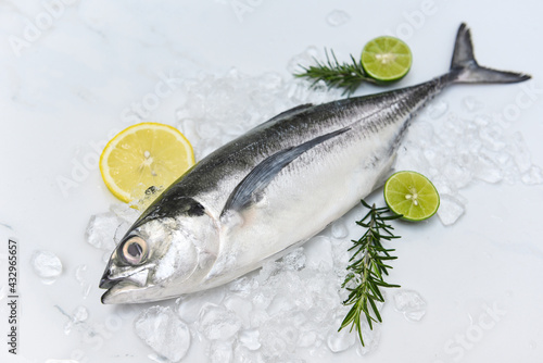Obraz na plátně mackerel scad, Fish on ice for cooking food in the restaurant, Fresh fish raw to
