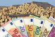 Holzpreis - Euroscheine mit Holzstapel im Hintergrund