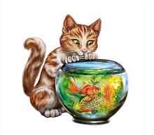 Cat And Fish In The Aquarium