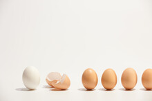 The Chain Of Eggs And Eggshell On The White Background