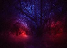 Rainy Night Orchard