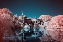 Burg Schloss Steht Am Wasser Und Spiegelt Sich Im Wasser Umgeben Von Rosa Blühenden Bäumen