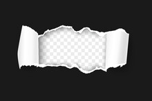 Torn Paper With Rolled Edge On Transparent Background Realistic Vector Illustration. Frame For Your Text Or Design. Black Friday Promo Concept Template