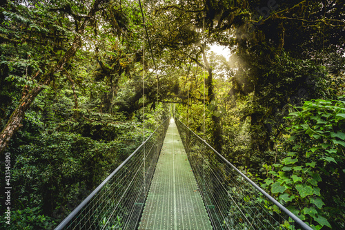 Photo jungle forest close to arenal volcano national park, costa rica