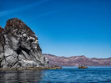 Sea Lions And Pelicans In Loreto Bay National Park, Baja, California