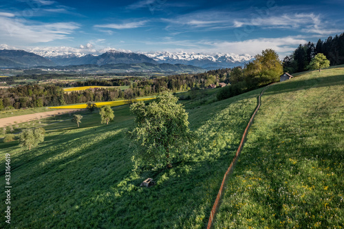 beutiful spring day wirth view of the alps