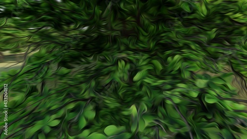 Foto green leaves background