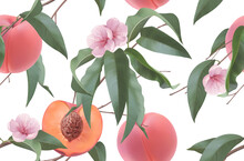 Peaches, Fruit Flowers And Leaves. Seamless Pattern. 3d Realistic Vector Background