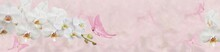 Pink Butterfly And White Orchid