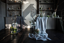 Modern Beautiful Dark Interior, Room Gray Color, Wardrobe Shelves Unusual Gloomy Decor Table Fabric Cloth, Dried Flowers, Vases With Water, Moss, Branches, Unusual Style, Halloween