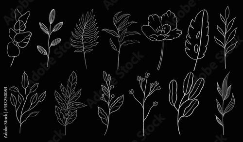 Fotografia Vintage seamless floral pattern