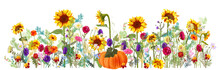 Panoramic Horizontal Autumn's Border: Pumpkin, Sunflowers, Aster, Thistles, Gerbera, Marigold, Daisy Flowers, Green Twigs On White Background. Digital Draw, Illustration In Watercolor Style, Vector