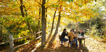 Business People Meeting At Table In Sunny Idyllic Autumn Park