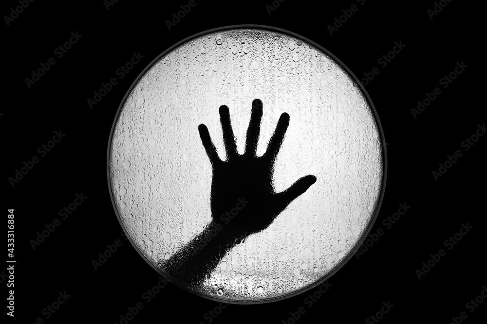 Fotografie, Obraz czarno biały silhouette zdjęcie pojedynczej ręki
