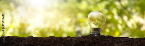 Fényképezés Light bulb with a plant inside - concept of environmental care and sustainable e