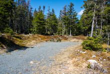 A Recreation Campground For RV Trailers Or Tents. The Driveway To The Campground Is Gravel And The Area Is Surrounded By Large Green Evergreen Trees And Blue Sky. There's A Picnic Table And Firepit.