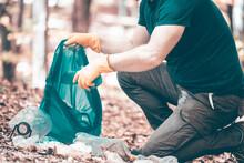 Volunteer Collecting Garbage In The Woods.
