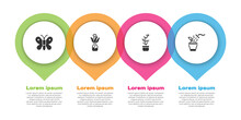 Set Butterfly, Flower In Glass Bottle, Exotic Tropical Plant Pot And Spraying. Business Infographic Template. Vector