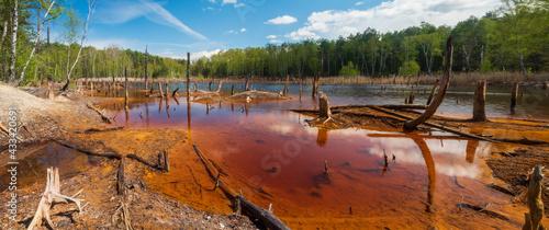 Canvas Print Brunatne jezioro