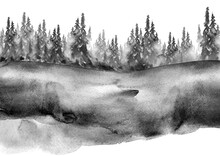 Watercolor Group Of Trees - Fir, Pine, Cedar, Fir-tree. Black And White Forest, Countryside Landscape.Slope, Hill, Forest Landscape. Drawing On White Isolated Background.Watercolor Cover, Banner