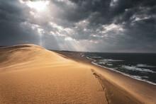 鳥取砂丘 Tottori Sand Dunes