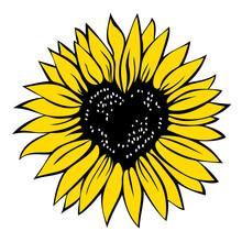 Heart Shaped Sunflower, Vector Illustration Isolated On White Background