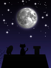 Illustration. A Cat On The Roof Of The House Looks At The Moon