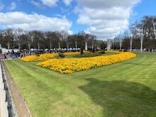 The Flowers Outside Buckingham Palace