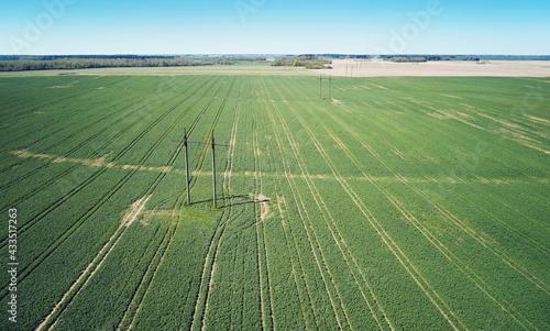 Fototapeta Electric power line in agriculture field obraz