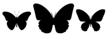 Three Black Butterflies Icon, Isolated On White Background