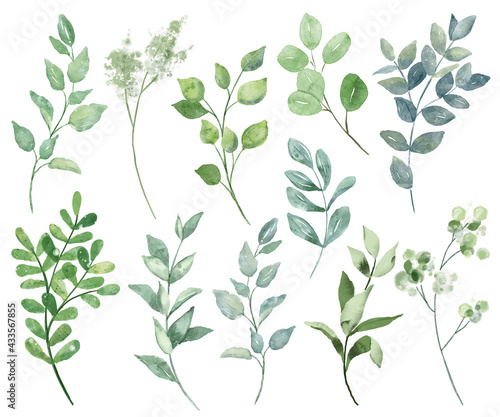 Cuadros en Lienzo Leaves watercolor set