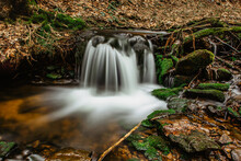 Cascades Of Small River Stream In Orlicke Mountains,Czech Republic. Long Exposure Water.Fresh Spring Mountain Scenery.Untouched Czech Nature.Motion Blurr Water In A Mountain Creek In Deep Wild Forest