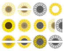 Set Of Sunflower. Split Monogram. Vector Paper Cut Template. Sunflower Mandala. Flower Silhouettes. Isolated On White Background. Decorative Symboll For Card,printing On T-shirt,mug. For Your Text.