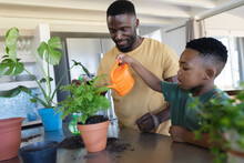 African American Father And Son In Kitchen, Watering Plants