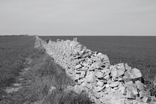 Monochrome Image Of Lush Green Agricultural Land And Old Stone Walls On The Cliff Top Of Nash Point Along The Coastal Path From Llantwit Major To Aberthaw Beach