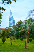 View From A Colorful Green Park To A Modern Glass Building With A Spire. Architecture Of Batumi
