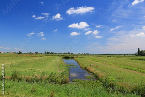 Fotografia Netherlands polder landscape of Zaandijk