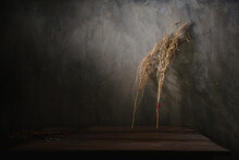 Twigs Of Dried Plants Placed On Wooden Table Near Wall With Sunlight In Dark Room