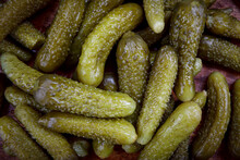 Background Of Juicy Pickled Cucumbers. Pickles.