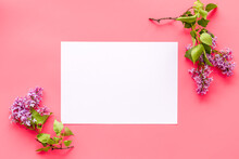 Spring Flowers Mock Up. Purple Flowers With Green Leaves. Space For Text
